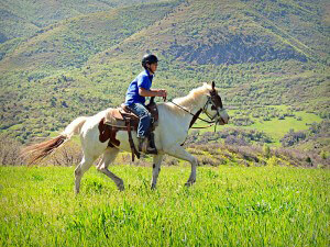 Equine therapy trail riding