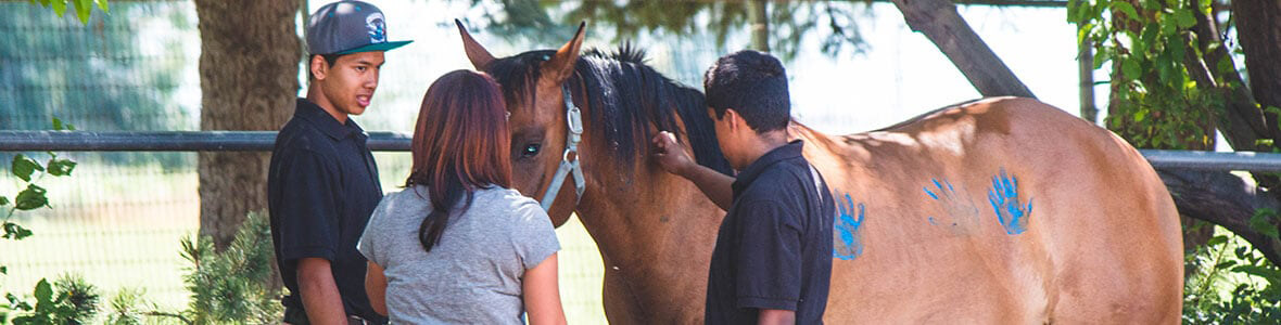 Equine-Therapy-at-Discovery-Ranch-for-Boys